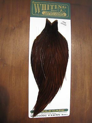 Fly Tying Whiting Farms Pro Rooster Cape Coachman Brown #B
