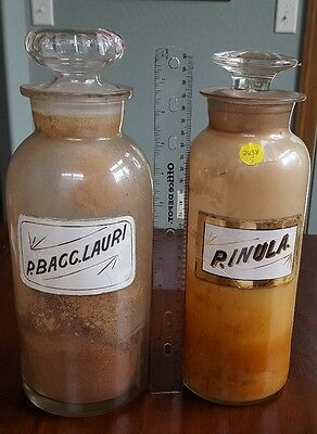Lot of 2 antique pharmacy apothecary 12 in. LUG bottles