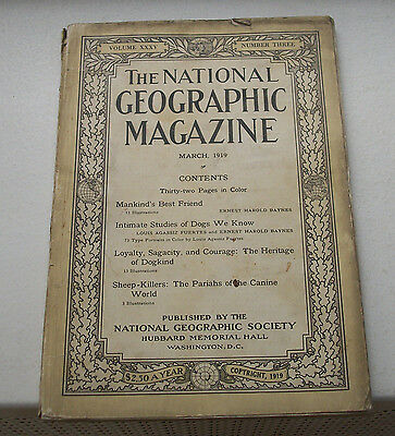National Geographic Volume XXXV Number 3 March 1919 – Dog Issue