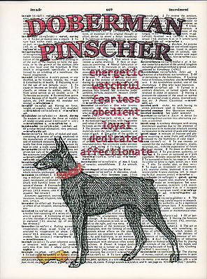 Doberman Pinscher Dog Traits Altered Art Print Upcycled Vintage Dictionary Page
