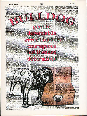 English Bulldog Traits Altered Art Print Upcycled Vintage Dictionary Page UGA