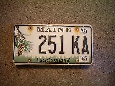Maine Pinecone Graphic      License Plate    Buy All States Here