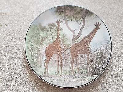 Royal Doulton African series 10 3/4 inch plate ~ Giraffes ~  T.C. 1055
