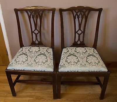Pair of 19th Century George III Dining Chairs