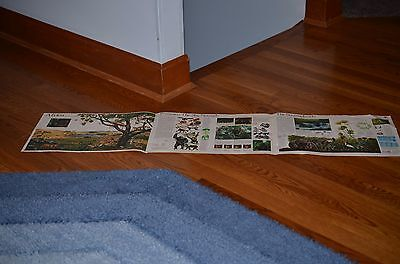 RARE 1981 African Rand McNally Trifold Poster 11 by 15  Each Panel