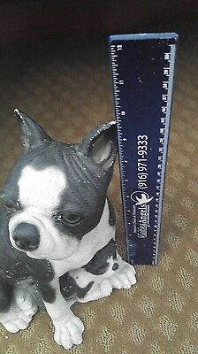 LARGE! Boston Terrier and baby bank