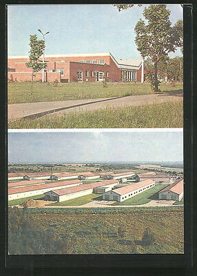 alte AK Ranna, Services building and broiler factory, State Farm