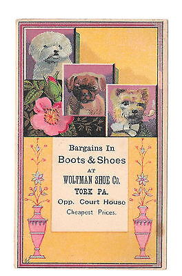 Woltman Boots Shoes York PA Victorian Trade Card Dogs Bow Tie and Pipe