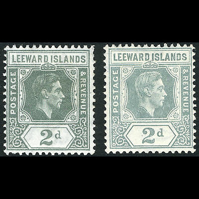 LEEWARD ISLANDS 1938-51 2d Olive Grey & Slate Grey. SG 103-103a. Mint. (AM268)