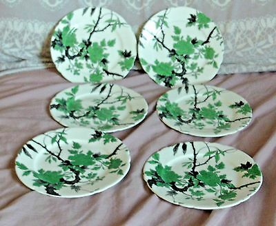 """6 Vintage Shelley China """"Chippendale"""" Side Plates"""