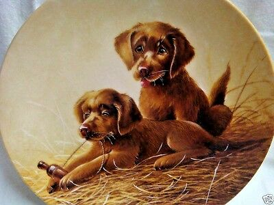 CHESAPEAKE BAY RETRIEVER PUPS Collector Plate by LYNN KAATZ - 1992