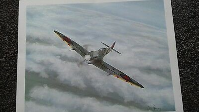 world war 2 spitfire print