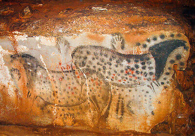 30,000 Yr Old Cave Painting Horse Cheval Prehistoric Art Tribal Canvas Print