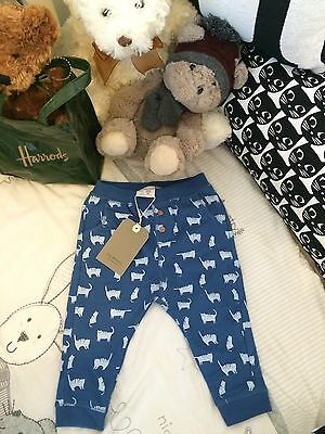 ZARA Baby Boy Stylish Cats Leggings / Trousers 9-12 Months BNWT