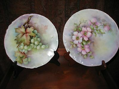 2 Bareuther Waldsassen Floral Display Plates Artist Signed  Hand Painted