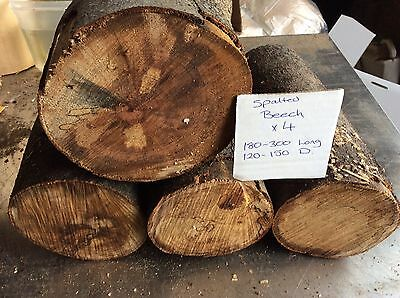 Spalted Beech,x4,Beech Wood Turning Blanks,free Delivery