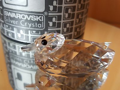 Swarovski  Medium Duck  - Usa And Canada Issues Only - Mib