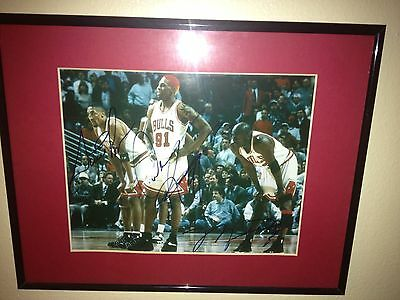 Michael Jordan Rodman Pippen Signed Auto With Coa Framed Bulls Nba Champ Chicago