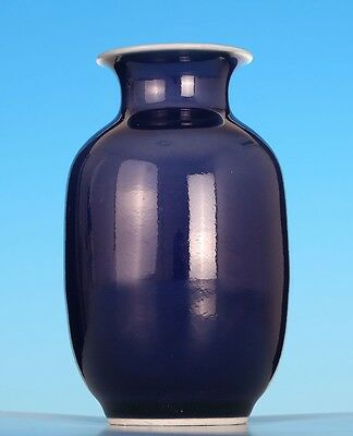 Very Rare Chinese Blue Glaze Porcelain Bottle Vase Marked TianShun WJ753