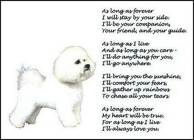 "Beautiful BICHON FRISE print ""AS LONG AS FOREVER"" poem photo picture sign NEW!"