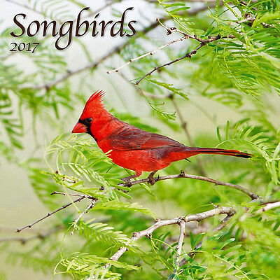 """Songbirds 2017 Wall Calendar by Turner/Lang (12"""" x 24"""" when opened)"""