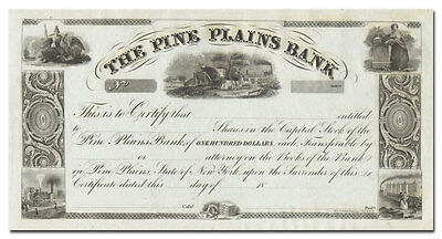 Pine Plains Bank Stock Certificate - 1800's Beauty!
