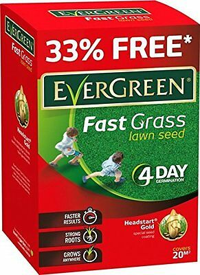 Evergreen Fast Grass Lawn Seed 15m2 Pluss 33% Extra Free 4 Day Germination
