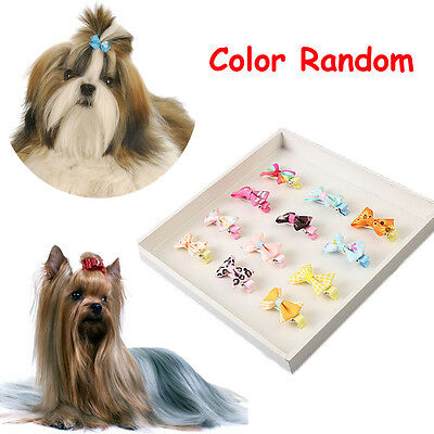 5PCS Dog Pet Grooming Bow Flower Hairpins Butterfly Hair Clips Hair Barrette New
