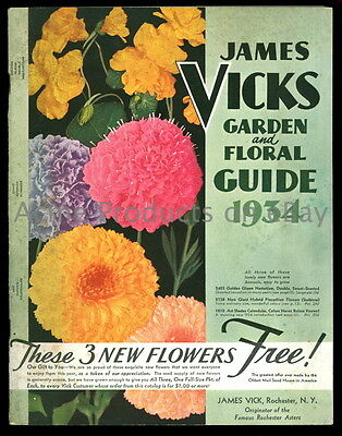 1934 Orig. GARDEN Catalog- FLOWERs & VEGETABLEs -James Vick- Rochester NY - 64pg
