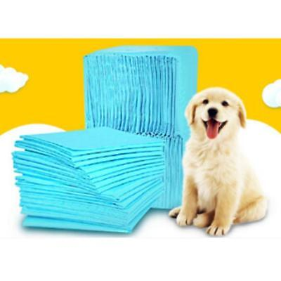 5Pcs/Set Super Absorbent Puppy Training Pads Trainer Toilet Wee B