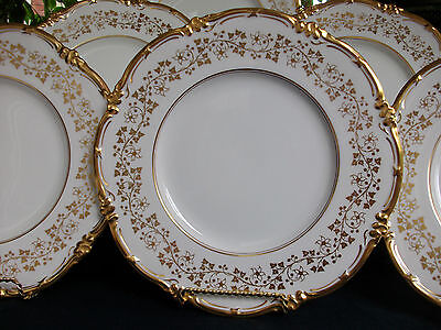 COALPORT V9864 GOLD VINES & FLOWERS (c.1950's) DINNER PLATE- EXCELLENT!! RARE!!