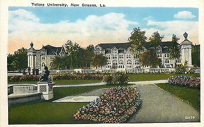 New Orleans Louisana~Flower Beds, Fountain? @ Tulane University~1920s Postcard