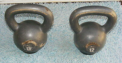 Hart Kettle Bell - 12kg Gym Crossfit Strength Dumbells Weights x 2