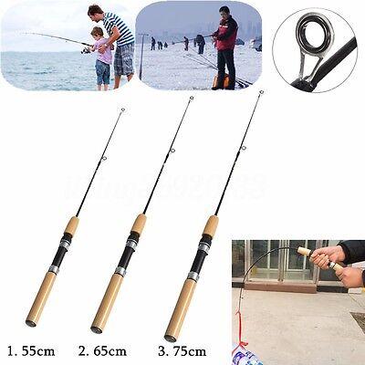 Caña de Pescar Mini con Carrete para Pesca en Playa Camping Portatil Fishing Rod