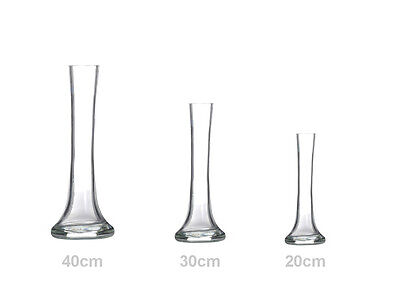 Clear Glass Lily Vase With Stylish Round Base 20 30 Or 40 cm New Wedding Flowers