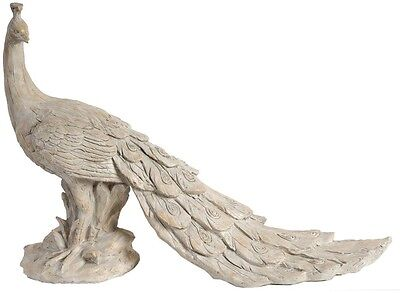 Carefully Crafted 22 Peacock Decorative Statue, Ideal For Home And Office
