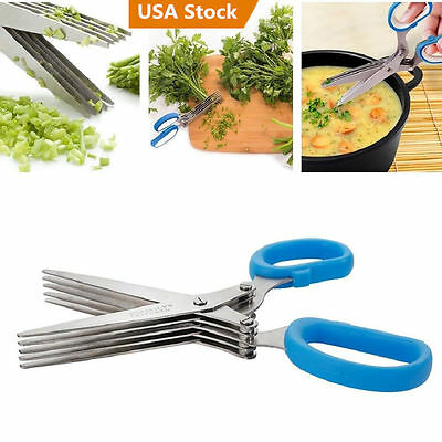 Multipurpose 5 Blade Herb Scissors Cleaning Time Saving Stainless Steel Kitchen