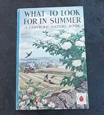 Ladybird What To Look For In Summer series 536 priced 2/6 - VGC