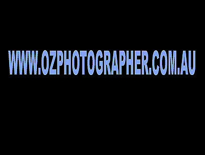 ozphotographer.com.au Domain Name for Sale Photography Business Domain Only