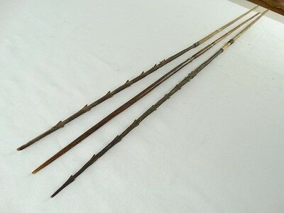 3 Antique Papuan Hunting Arrows Papua New Guinea Cane & Carved Wood As collected