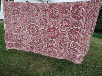 Coverlet Early Hand Double Woven Primitive Condition Burgundy/wine/white Antique