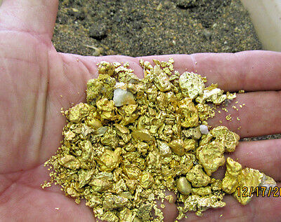 5+LBS SUPER RICH GOLD Panning Con's Micro<Flake<Pickers w/4.+ gram GOLD NUGGET