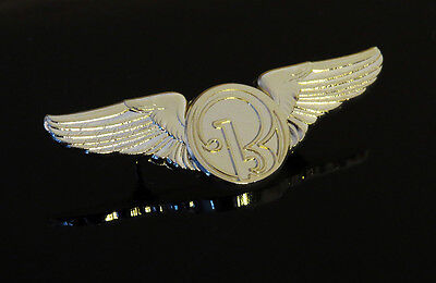 WINGS Pin Beechcraft Aircraft Beech Aircraft Corporation gold Wing Private Pilot