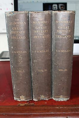 The Mammals Of Great Britain And Ireland - Millais, J.G.. Illus. By Millais, J.G