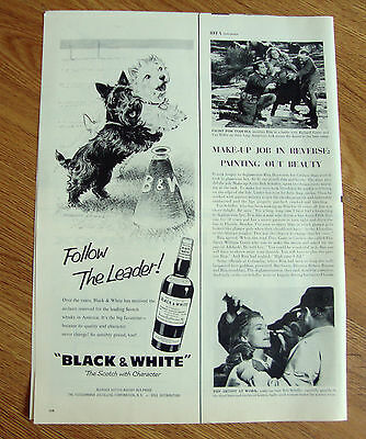 1959 Black White Scottish Scotty Terrier Westie Ad Follow the Leader