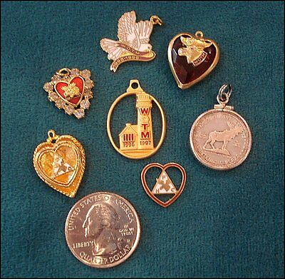 WOTM Jewelry Women of the Moose Fraternal Order Pendants or Charms 7 Pieces LOOM