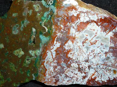 New Strangely Uniquely Patterned Gemmy Moroccan Agate Rough End-Cut Slab To Cab