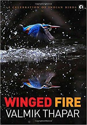Winged Fire