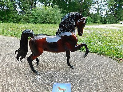 Breyer Sherman Morgan - glossy 2002 QVC model  NIB