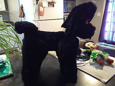 vintage plush stuffed animal black french poodle beautiful condition 1950's
